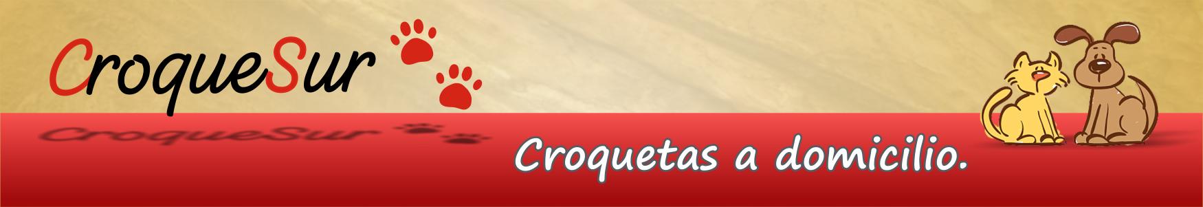 CroqueSur