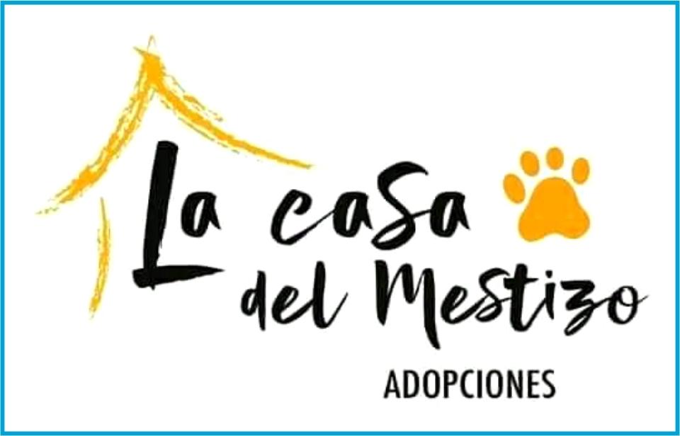 Albergue para perros la casa del Mestizo CDMX