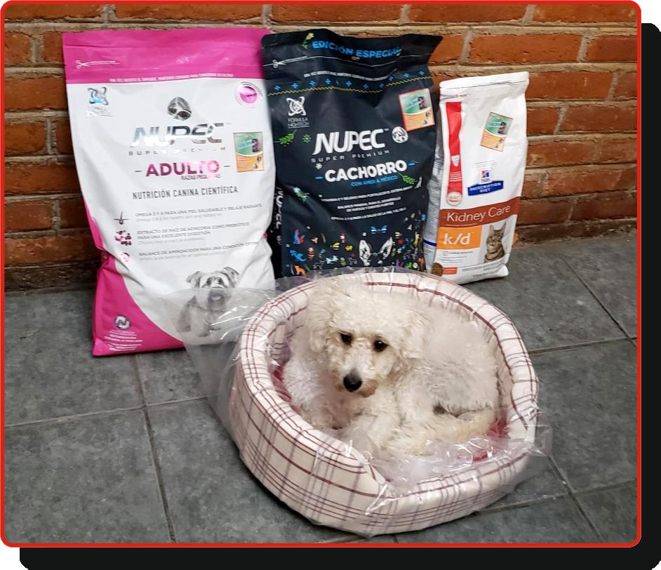 Croquetas a domicilio para perro y gato en CDMX